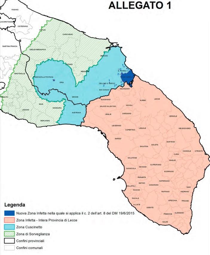 Mappa Xylella Puglia.Xylella Torchiarolo Tutta Zona Infetta Estese Anche Le Zone A Infestazione Limitata