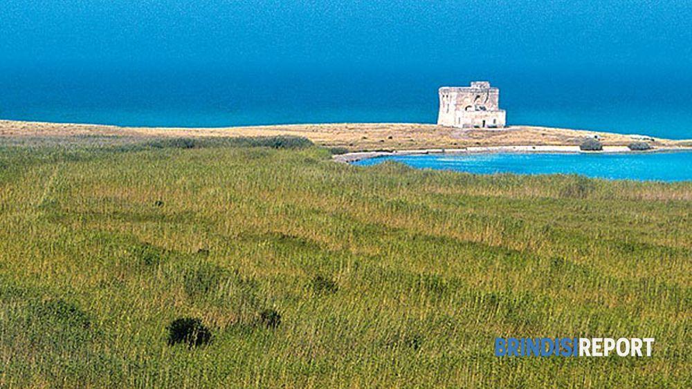 L'Area marina protetta di Torre Guaceto