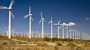 Un parco eolico