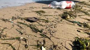 pulizia spiaggia ragazzini3-2