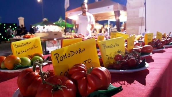 Notte Verde i pomodori-2