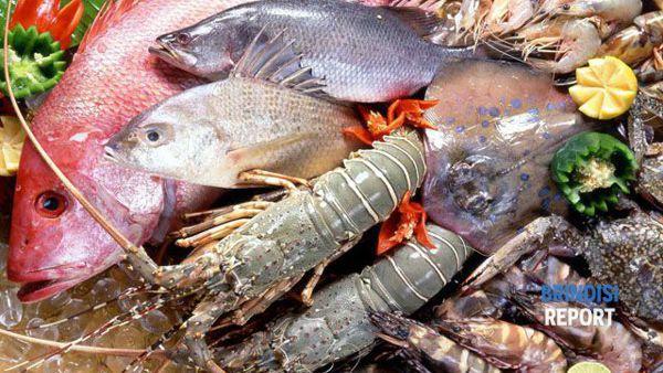 Il pesce, al centro della bioalimentazione
