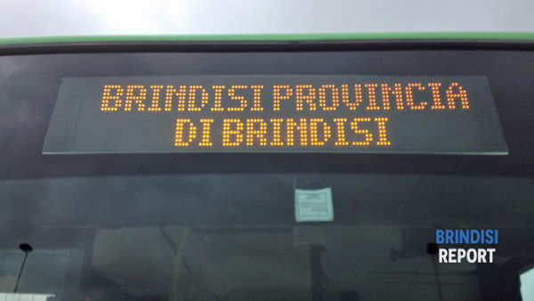 Display bus urbano