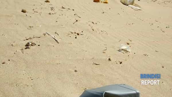 spiaggia sporca campo di mare aprile 2019.3-2