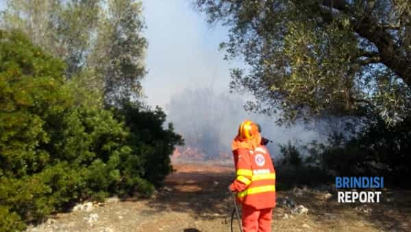 Incendio macchia mediterranea contrada Argintuni  2-2