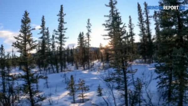 """David e il viaggio in Alaska: """"Amiamo l'avventura, ma non siamo degli sprovveduti"""""""
