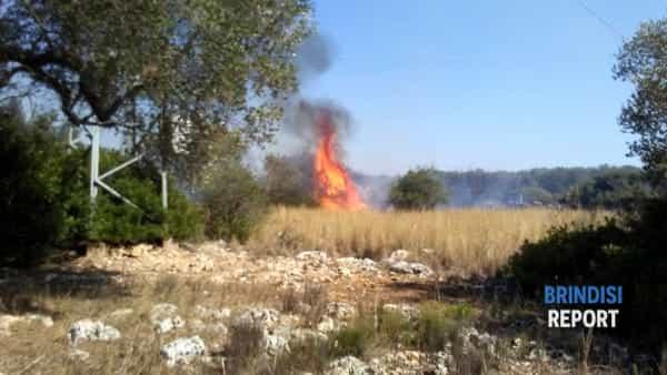 Incendio macchia mediterranea contrada Argintuni 3-2