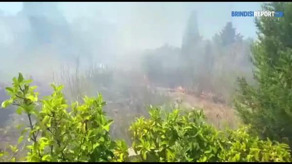 Brindisi, vasto incendio arriva a ridosso delle villette: paura fra i residenti