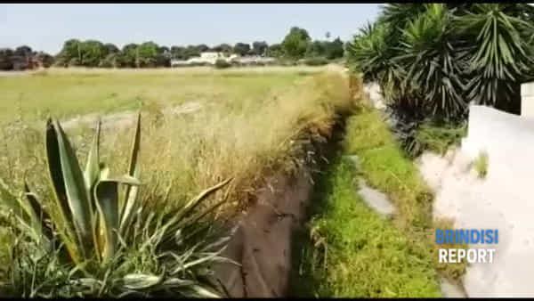 Il canale di raccolta delle acque piovane nel mirino degli inquinatori