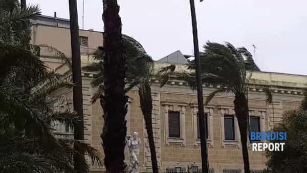 Raffiche di vento in città e mare in tempesta: gli effetti del maltempo