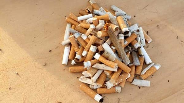 cicche sigarette raccolte-2