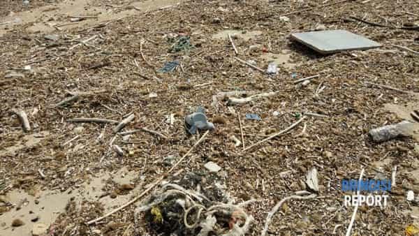 spiaggia sporca campo di mare aprile 2019-2-3-2