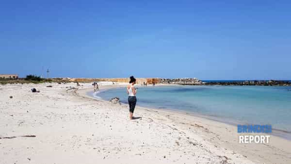 Spiaggia Punta Penna Grossa 2019 3-2
