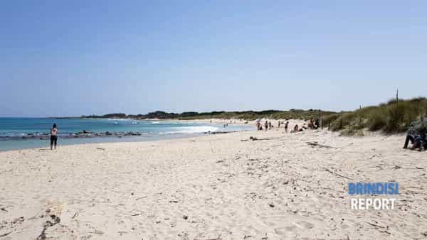 Spiaggia Punta Penna Grossa 2019 6-2