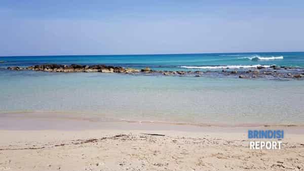 Spiaggia Punta Penna Grossa 2019 7-2