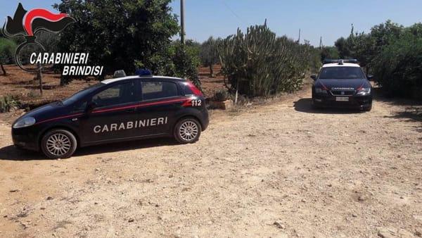 carabinieri campagna masseria-2