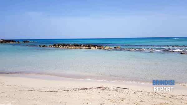 Spiaggia Punta Penna Grossa 2019 4-2