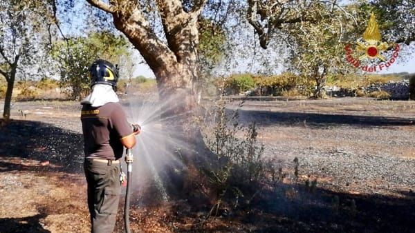 Incendio macchia mediterranea contrada Argintuni  2 4-2