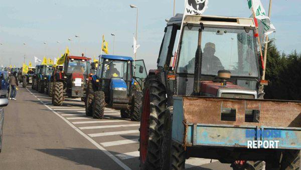 Una delle manifestazioni degli agricoltori dei terreni contaminati