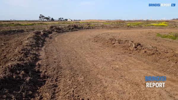 Pista da cross nella natura incontaminata: violata l'oasi delle Saline
