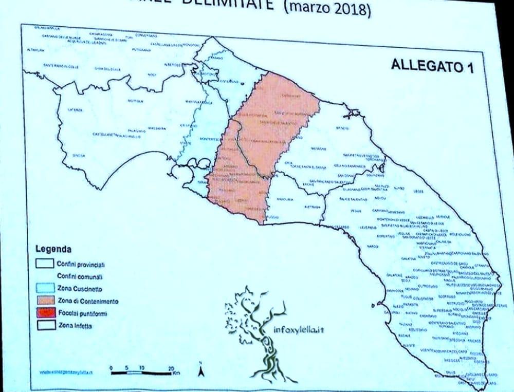 Mappa Xylella Puglia.Xylella Fastidiosa Individuata La Nuova Zona Cuscinetto