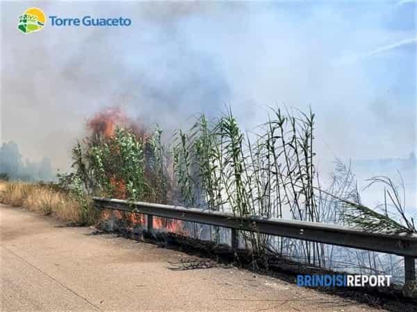 Incendio Torre Guaceto 26 06 2019 4-2