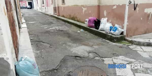 raccolta umido rifiuti san pietro3-2