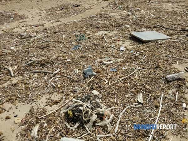 spiaggia sporca campo di mare aprile 2019-2-2