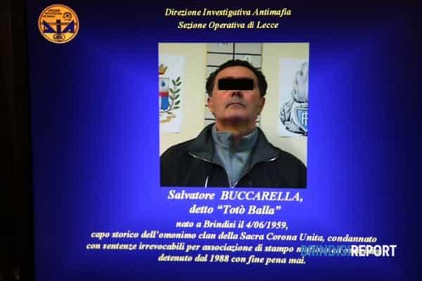 SALVATORE BUCCARELLA DIA-2