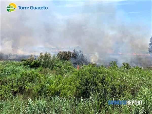 Incendio Torre Guaceto 26 06 2019 5-2