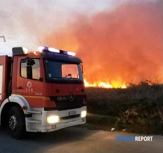 incendio sterpaglie presso la Ipem (10)-2