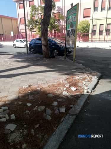 """Degrado urbano a Brindisi in Via Monticelli Teodoro Abate, 2: """"Ferri arrugginiti che escono da sotto le mattonelle di un  marciapiede in prossimità dell'asilo...""""-3"""