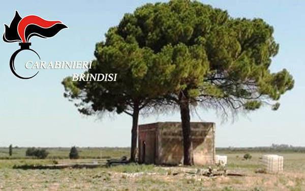 SAN PANCRAZIO S. fabbricato rurale (2)-2