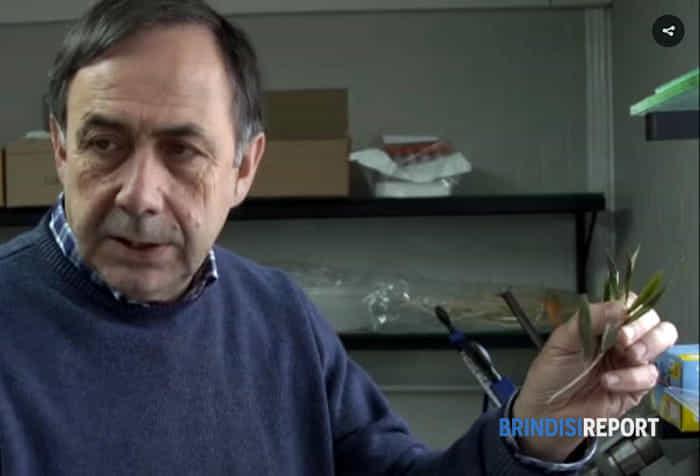 Il professor Donato Boscia 3-2