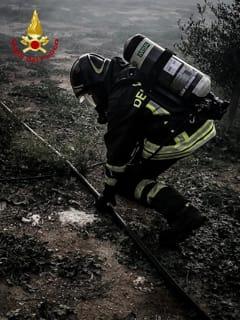 Incendio Apani-3